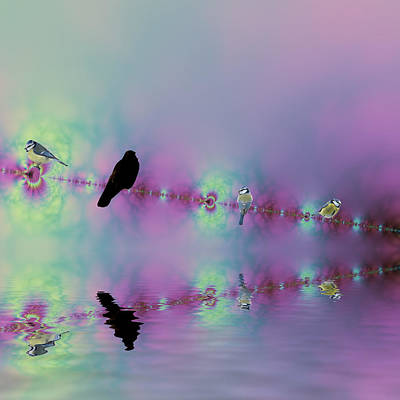 Birds On A Wire Reflected Print by Sharon Lisa Clarke