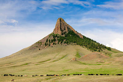 Black Angus Photograph - Birdtail Butte Necklace by Todd Klassy