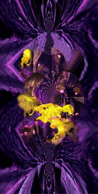 Huge Assemblage Photograph - Birth Of Universe by Robert Kernodle