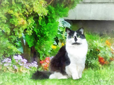 Animal Photograph - Black And White Cat By Flowers by Susan Savad
