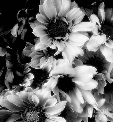 Black And White Print by Kathleen Struckle