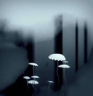 Black And White Mushrooms Print by GuoJun Pan