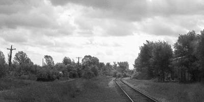 Horse In The Run Photograph - Black And White Railroad Tracks In Casanovia by Rosemarie E Seppala