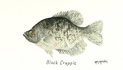 Crappie Painting - Black Crappie by Ken Marsden