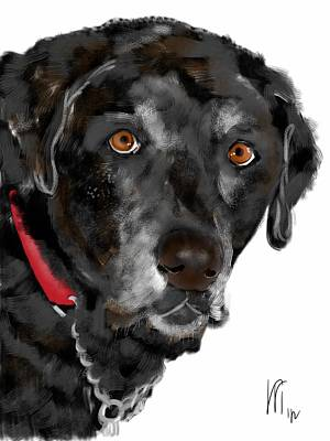 Retriever Digital Art - Black Lab Red Collar by Lois Ivancin Tavaf