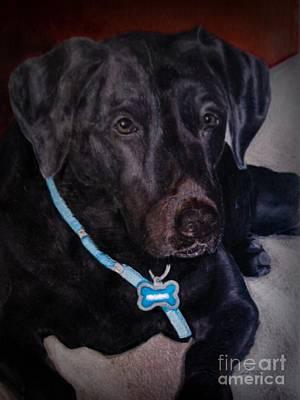 Dog Drawing - Black Labrador Retriever Drawing by Zina Stromberg