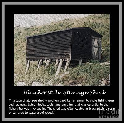 Black Pitch Storage Shed Print by Barbara Griffin