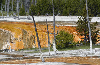 Black Sand Basin Therma Runoff Yellowstone Print by Bruce Gourley