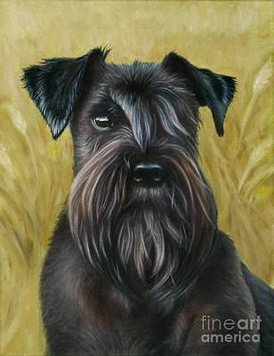 Dog Painting - Black Schanuzer by Tobiasz Stefaniak