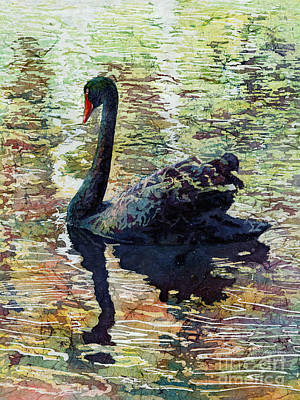 Swan Painting - Black Swan by Hailey E Herrera