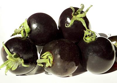 Black Tomatoes (indigo Rose) Print by Ian Gowland
