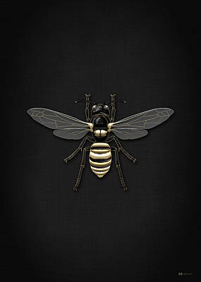 Black Wasp With Gold Accents On Black Canvas Print by Serge Averbukh
