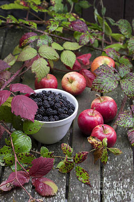 Food Art Photograph - Blackberry And Apple by Tim Gainey