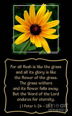 Botanicals Photograph - Blackeyed Susan With Bible Quote From 1 Peter by Rose Santuci-Sofranko