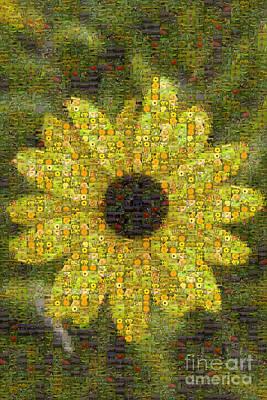 Blackeyed Suzy Mosaic Print by Darleen Stry