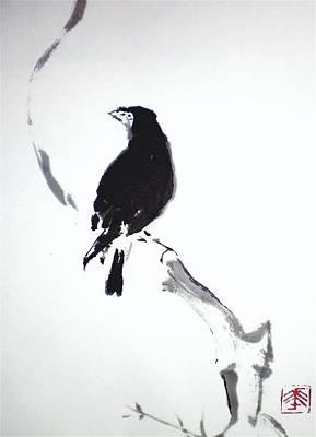 Blackbird Drawing - Blakbird by Dafni' Hou
