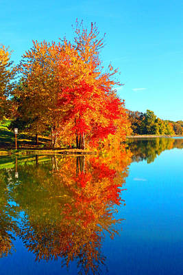 Blazing Autumn Color Print by Lorna Rogers Photography