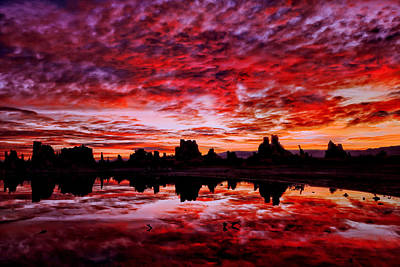High Sierra Digital Art - Blazing Dawn by Kathleen Bishop
