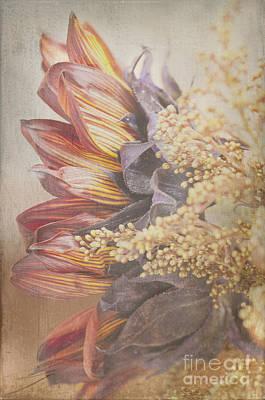 Blazing Profile Textured Print by Bob and Nancy Kendrick