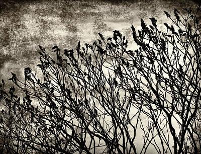 Bleak View Print by Mary Lane