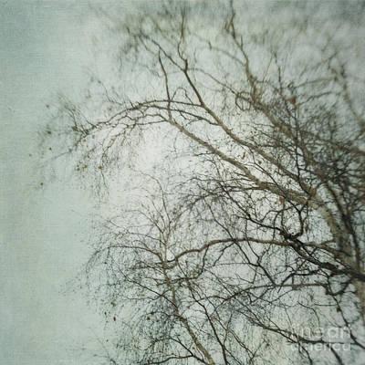 Lensbaby Photograph - bleakly II by Priska Wettstein
