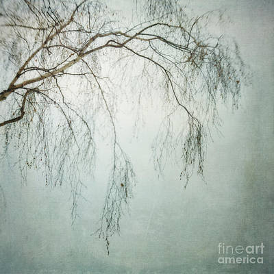 Lensbaby Photograph - bleakly III by Priska Wettstein