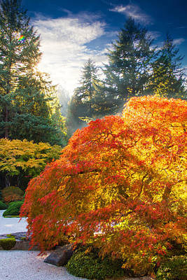Of Autumn Photograph - Bliss by Kunal Mehra