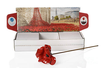 Tower Of London Photograph - Blood Swept Lands And Seas Of Red by Amanda And Christopher Elwell