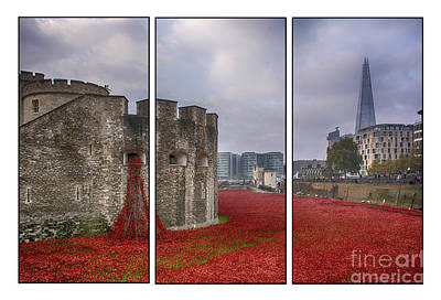 Tryptych Photograph - Blood Swept Lands Tryptych by Chris Thaxter