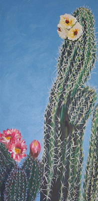 Bloomin Cactus Print by Marcia Weller-Wenbert