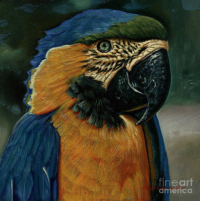 Blue And Gold Macaw Painting - Blue And Gold Macaw by Herrera