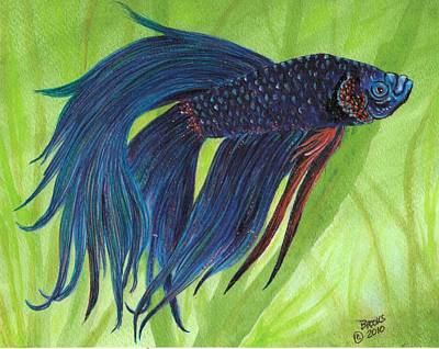 Artist Richard Brooks Painting - Blue Betta by Richard Brooks