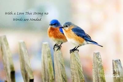 Blue Bird Love Notes Print by Scott Pellegrin