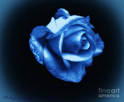 Rose Digital Art - Blue Blue Rose by Gena Weiser