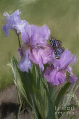Blue Butterfly Landing Print by Susan  Lipschutz