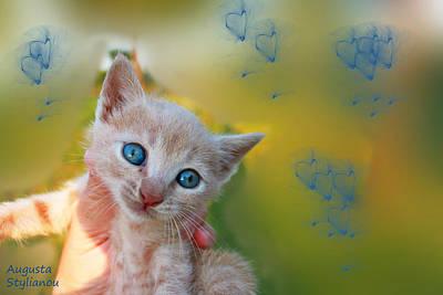 Soulful Eyes Digital Art - Blue Eyes Kitten by Augusta Stylianou