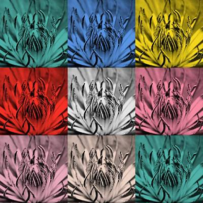 Aster Mixed Media - Blue Flower In Popart by Toppart Sweden