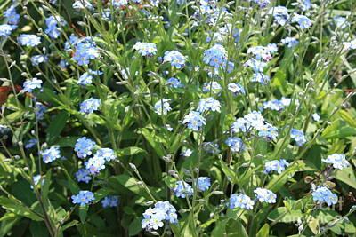 Blue Flowers Original by Evgeny Pisarev