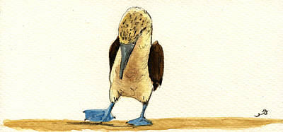 Blue Footed Booby Original by Juan  Bosco
