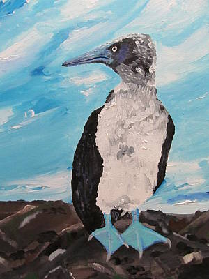 Blue Footed Booby Original by Susan Snow Voidets