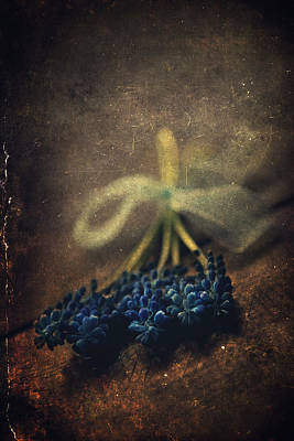 Blue Grape Hyacinth Flowers On The Dark Brown Surface Print by Jaroslaw Blaminsky
