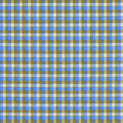 Blue Green And White Plaid Pattern Cloth Background Print by Keith Webber Jr