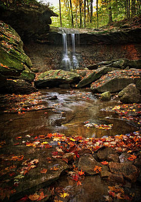 Blue Hen Falls In Autumn Print by Dale Kincaid