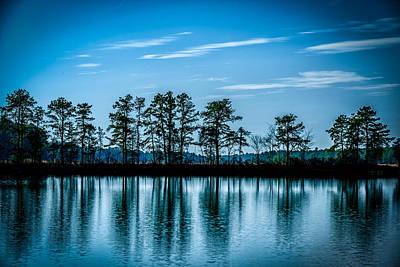 New Jersey Pine Barrens Photograph - Blue Hour by Louis Dallara