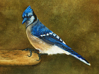 Blue Jay Painting - Blue Jay by Nan Wright