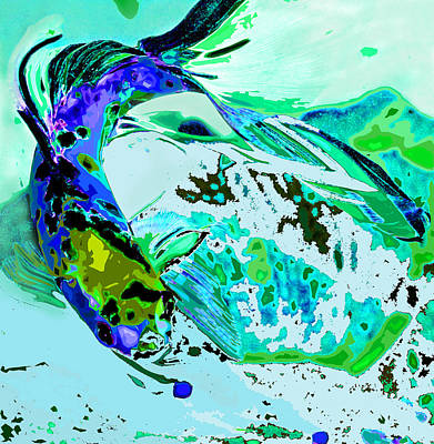 Koi Digital Art - Blue Koi by Norman Johnson