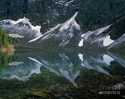 Blue Lake Reflection Print by Tracy Knauer