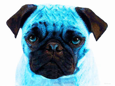 Blue - Pug Pop Art By Sharon Cummings Print by Sharon Cummings