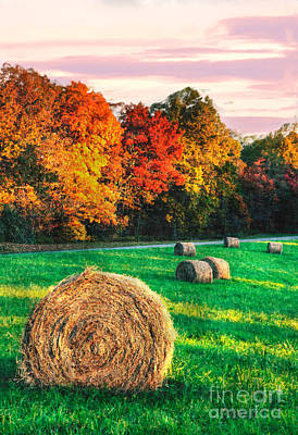 Groundhog Photograph - Blue Ridge - Fall Colors Autumn Colorful Trees And Hay Bales II by Dan Carmichael
