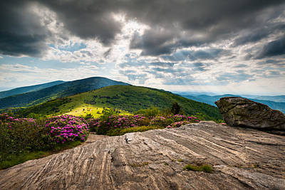 Blue Ridge Mountains Landscape - Roan Mountain Appalachian Trail Nc Tn Print by Dave Allen